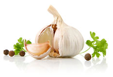 Garlic fruit with parsley spice Stock Image