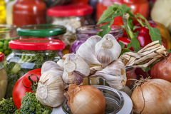 Garlic with fruit and vegetables Stock Images