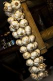 Garlic in a garland royalty free stock image