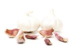 Garlic and garlic cloves Royalty Free Stock Photos