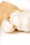 Garlic and garlic powder Stock Image