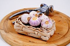 Garlic and garlic press. Royalty Free Stock Photo