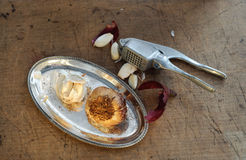 Garlic and Garlic Press Royalty Free Stock Photo