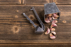 Garlic and garlic press Royalty Free Stock Photos