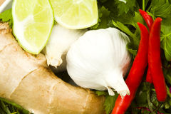 Garlic, ginger, chillies and limes Royalty Free Stock Image