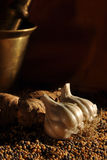 Garlic and Ginger1 Stock Images