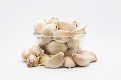 Garlic on glass cup, on white. Background Royalty Free Stock Photos