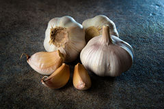 Garlic on gray background. Three heads of garlic on gray background Stock Image