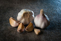Garlic on the gray background. Two heads of garlic on the gray background Stock Photography