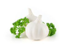 Garlic with green parsley leaves Stock Photography