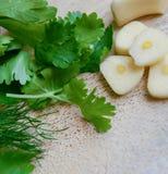 Garlic and greenery Stock Photo