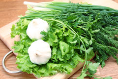 Garlic, greens and onion on hardboard Royalty Free Stock Photos