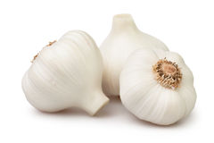 Garlic group Stock Photos