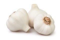 Garlic group Stock Photos