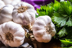 garlic Grupo do alho fresco com ervas do aipo Foto de Stock Royalty Free