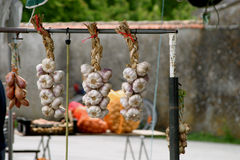 Garlic Hanging on Market Stall France. Garlic (Allium sativum) is a perennial plant in the family Alliaceae and genus Allium, closely related to the onion Royalty Free Stock Photography