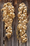 Garlic hanging on rustic wooden wall Royalty Free Stock Images