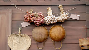 Garlic hanging on the wall Royalty Free Stock Images