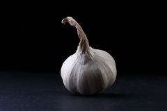 The  garlic Stock Photo