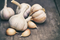 Garlic head and cloves Royalty Free Stock Images