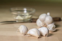 Garlic head with a glass bowl Royalty Free Stock Photo