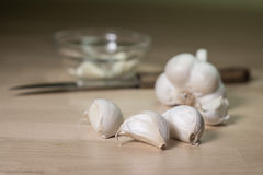 Garlic head with a glass bowl Royalty Free Stock Images