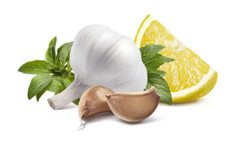 Garlic head lemon basil  on white background Royalty Free Stock Photos