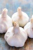 garlic herb 图库摄影