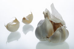 Garlic. Is an herb. It is best known as a flavoring for food. But over the years,  has been used as a medicine to prevent or treat a wide range of diseases Stock Images