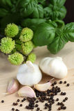 Garlic, herbs and pepper Royalty Free Stock Photos
