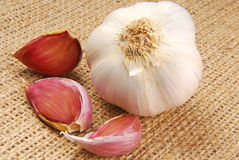 Garlic on hessian fabric Stock Photography
