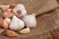 Garlic horizontal banner. Eco farming concept. Whole garlics and cloves on piece of sacking textured background. Organic food. Stock Images