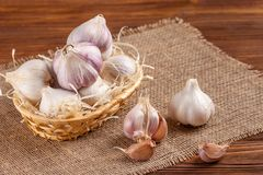 Garlic horizontal banner. Eco farming concept. Whole garlics and cloves in straw basket on piece of sacking on brown wooden textur Stock Photography