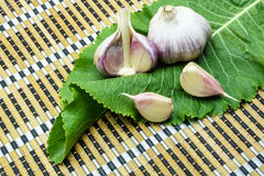 Garlic and horseradish on a napkin. Garlic and horseradish on a bamboo napkin stock image