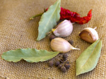 Garlic, hot peppers and spices Stock Photography