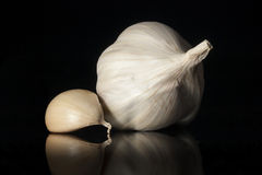 Garlic isolated on black background Royalty Free Stock Images