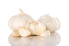 Garlic isolated over white background Royalty Free Stock Photography