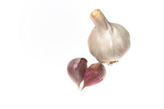 Garlic isolated on white. Garlic and two cloves isolated on white Stock Photos