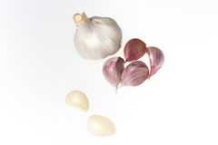 Garlic isolated on white. Garlic and six cloves isolated on white Stock Photography