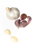 Garlic isolated on white Royalty Free Stock Photo