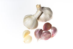 Garlic isolated on white. Garlic and six cloves isolated on white Royalty Free Stock Photos