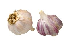 Garlic isolated on white background Royalty Free Stock Photography