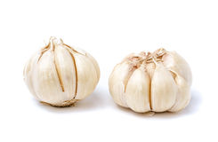 Garlic isolated on white Stock Images