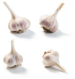 Garlic isolated on a white Stock Photography
