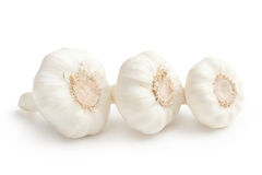 Garlic isolated on white background. Garlic. Garlic isolated on white background Royalty Free Stock Photos
