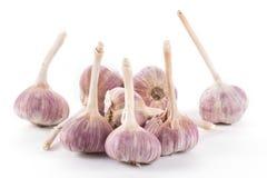 Garlic. Isolated on white background Stock Photos