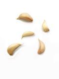 Garlic isolated on white background Royalty Free Stock Images