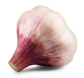 Garlic isolated Stock Image