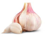 Garlic isolated. On white background. Clipping Path stock photo