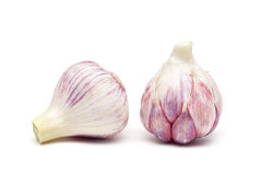 Garlic isolated on white background close up Royalty Free Stock Images